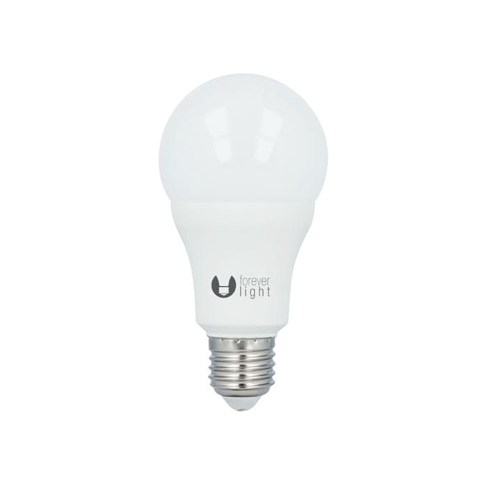 LED žárovka Forever A65 E27 15W studená bílá